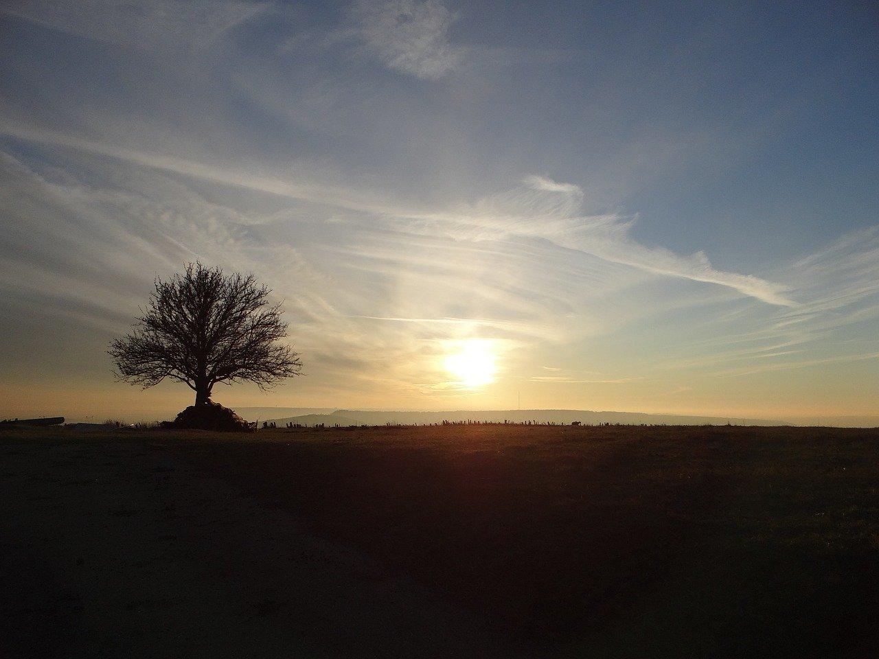 field, lorraine, amance